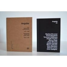 Angular: Cine experimental y videocreación