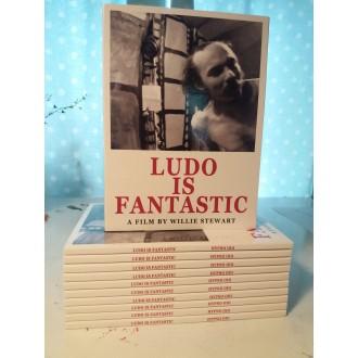 Ludo Is Fantastic: A Portrait Of The Artist Ludo Mich